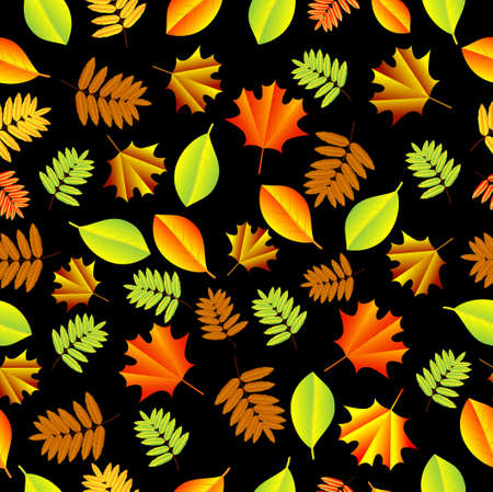 autumn background: Seamless background with autumn leaves, vector illustration