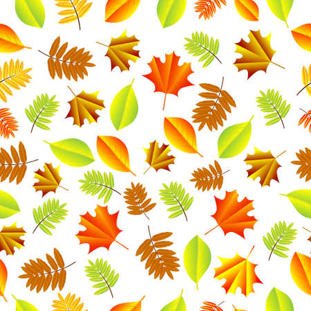 ashes: Seamless background with autumn leaves, vector illustration