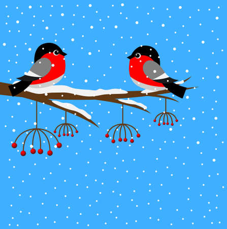 mountain ash: Two bullfinch sitting on a branch of a mountain ash, vector illustration
