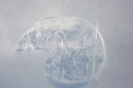 ice sculpture: Detail of transparent ice sculpture