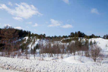 森の山のある冬景色