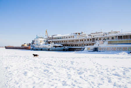 backwater: Perm, Russia-March 11.2017: Winter landscape with sailboats in the backwater of frozen river Kama Editorial