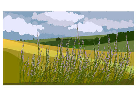 Vector illustration of beautiful summer fields landscape with a green hills and blue sky. Country background in flat style for design banner, ticket, leaflet, card, poster and so on Vektoros illusztráció