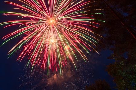 Colorful fireworks against the dark blue sky and trees. Long exposure.
