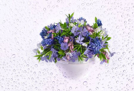 A bouquet of spring flowers in a vase, on a background with water droplets.