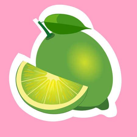 lime slice: lime slice isolated flat design