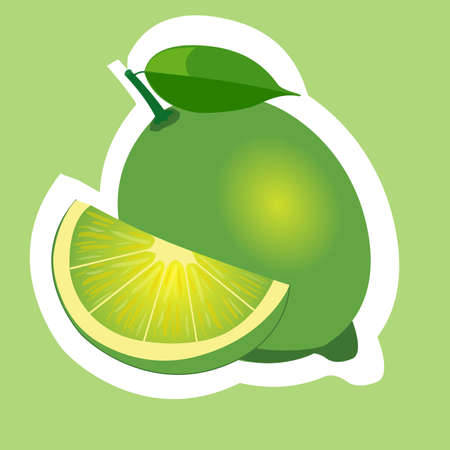 citric: lime slice isolated flat design