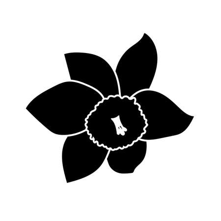 One hand drawn narcissus flowers. Elegant vintage card. Black flower and white stroke. Vector