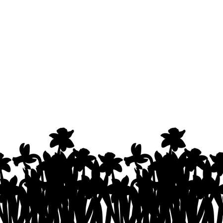 Postcard of black small narcissus flowers silhouette isolated on white. Vector