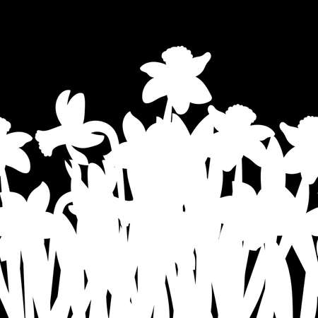Postcard of white narcissus flowers silhouette isolated on black background. Vector