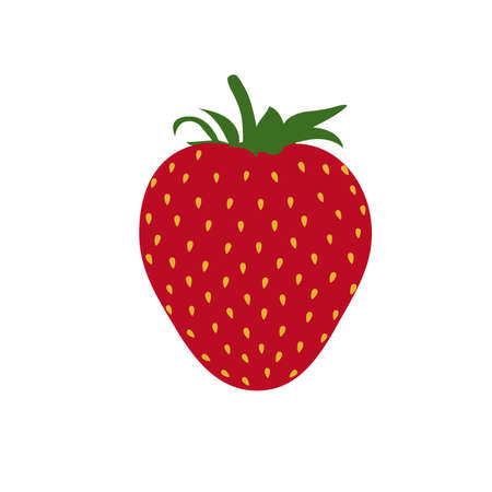 Beautiful red strawberry vector illustration. White background