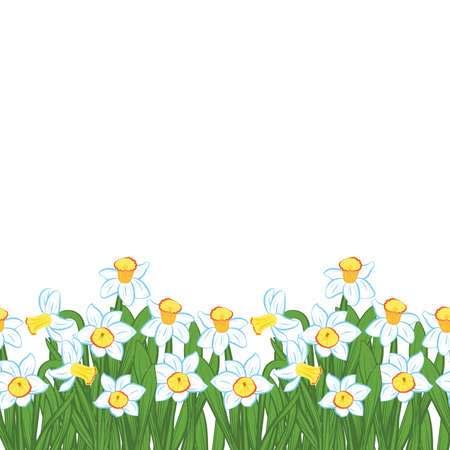 Postcard of green grass with small blue narcissus flowers isolated on white. Vector