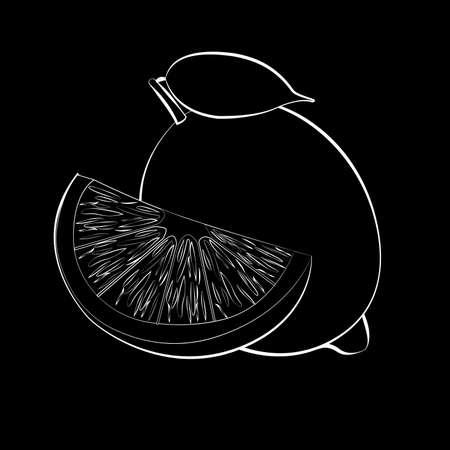 Vector illustration of black lemon silhouette with white stroke. Flat design. Black background