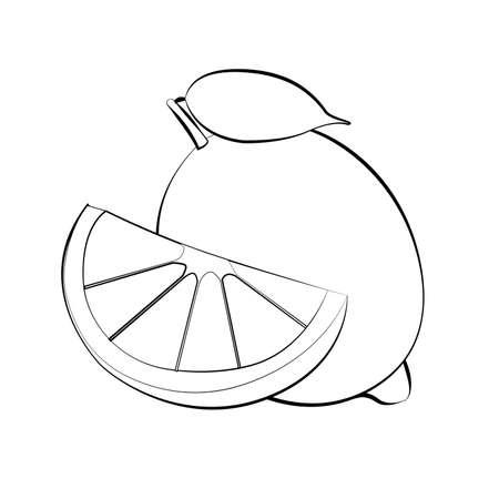 Vector illustration of white lemon silhouette with black stroke. Flat design