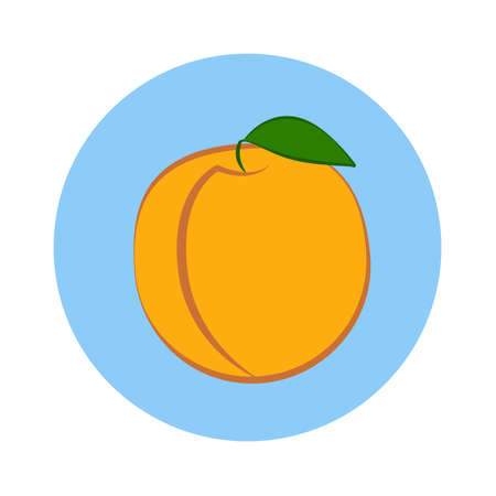 Apricot with leaf in blue circle on a white background. Vector illustration.
