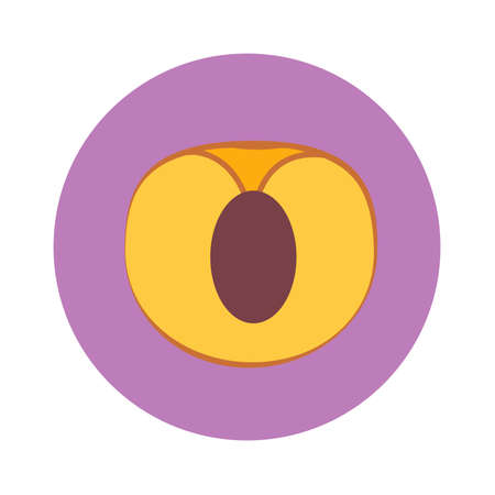 Apricot slice with seed in purple circle on a white background. Vector illustration.