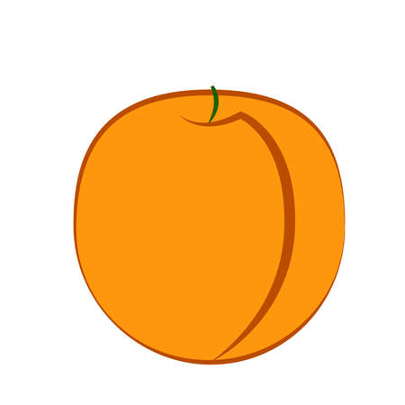 Peach fruit on a white background. Vector