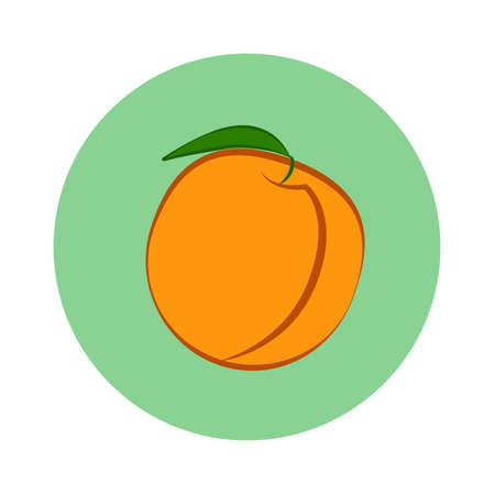 Peach fruit with leaf in green circle on a white background. Vector Illustration