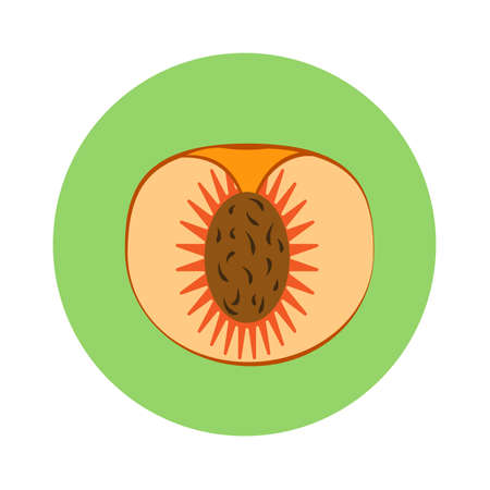 Peach slice with seed in green circle on a white background. Vector