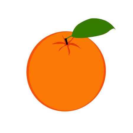 Fresh ripe half oranges with leaves Vector illustration