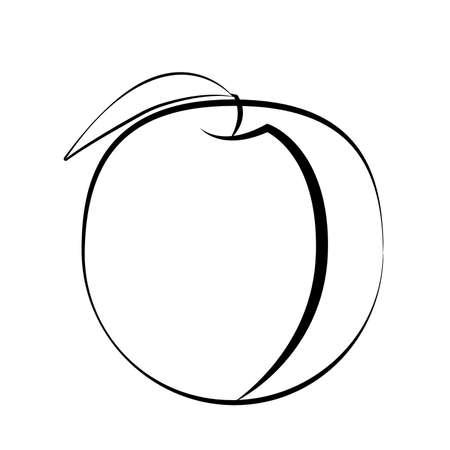 Peach fruit with leaf