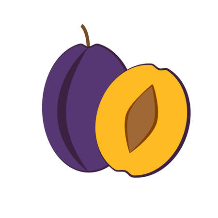 Plum fruit and slice on white background. Vector Reklamní fotografie - 82028779