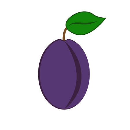 Plum with leaf Vector Ilustrace