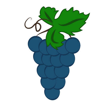 Bunch of wine grapes with leaf flat color icon for food apps and websites. Vector illustration