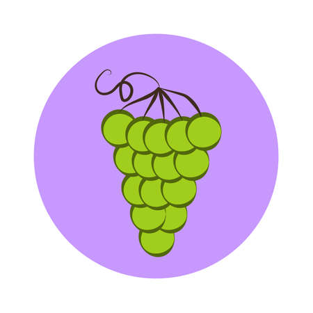 Bunch of green wine grapes flat color icon for food apps and websites
