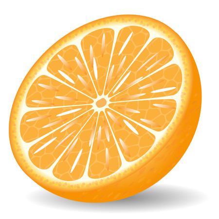 orange cut: Orange in a cut on a white background