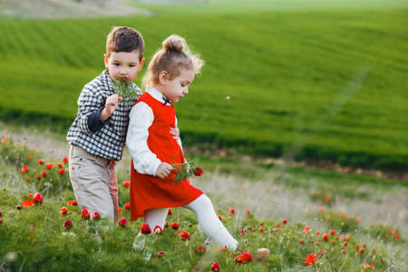 Little children are walking in a field with red flowers.