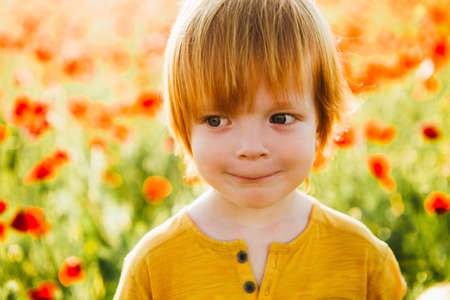 A small red-haired boy on a background of a poppy field.
