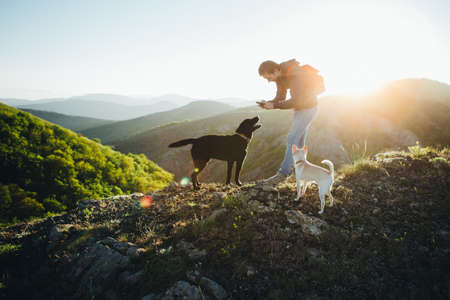 A man is playing with two dogs on top of a mountain.