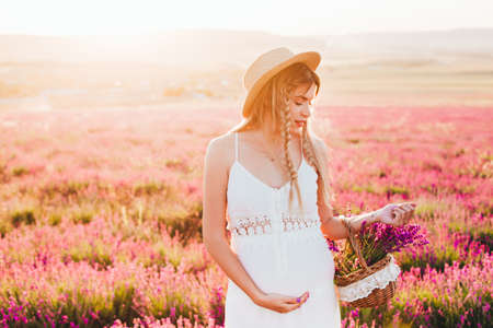 A blonde girl in a hat and a white dress with a basket full of lavender among the serene field. Stock Photo