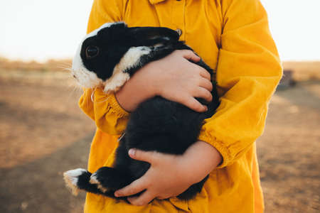 Little girl playing with the rabbits in the petting zoo. Easter tradition of visiting a rabbit. Stockfoto