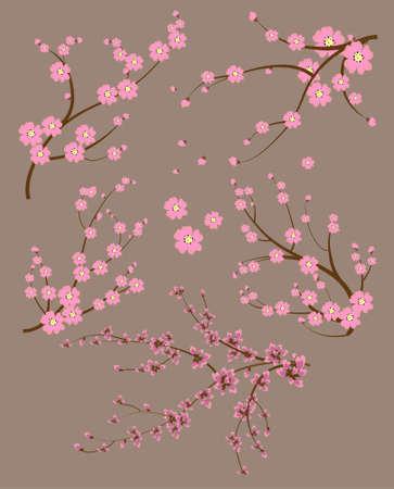 flor de durazno: Rama japonesa Vectores