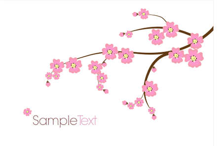 cherry blossom tree: Postcard with Japanese branch Illustration