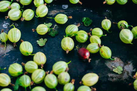 A scattering of gooseberry on a metal tray, background Imagens