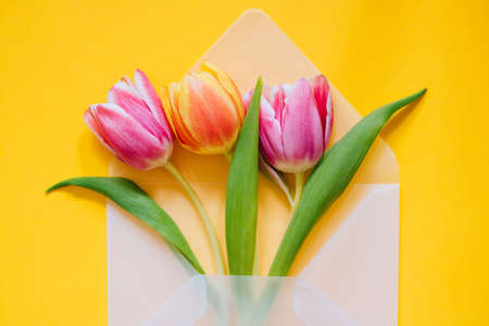 Open matte transparent envelope with multicolored tulips on yellow background. Easter concept, flat lay, copy space. 免版税图像