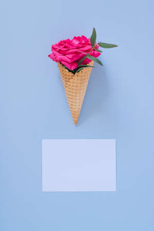 Flat lay Ice Cream Cone with pink rose on blue background and white clear blank. Happy text