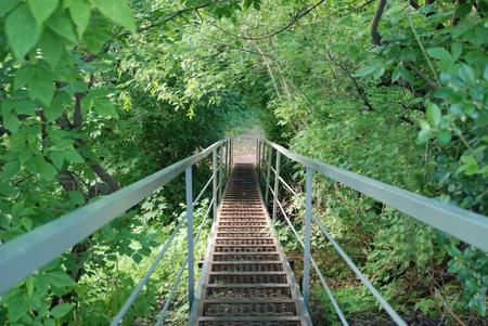 suspenso: Pasos de escalera de hierro en el bosque. Foto de archivo