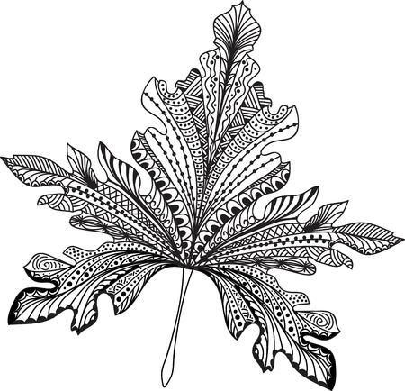foliages: Doodle textured leaf background. Hand drawn illustration.