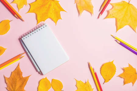 .Autumn fallen foliage and notebook on pink background
