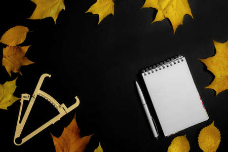 .Autumn fallen leaves, caliper and notebook on black background. 写真素材