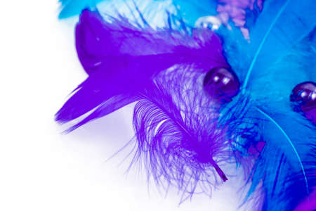Feather background - small fluffy blue feathers randomly scattered on white table