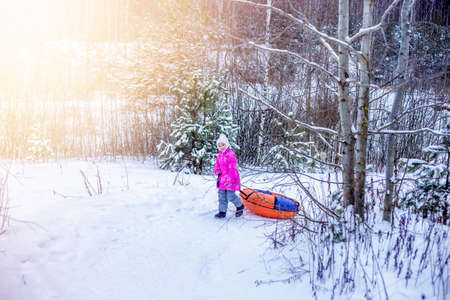 Little girl drags slide-slide cheesecake up snowy hill. Foto de archivo