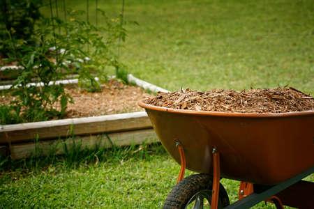 Mulch für den Garten mit Tomaten-Pläne auf den Hintergrund Bett Standard-Bild - 37539912