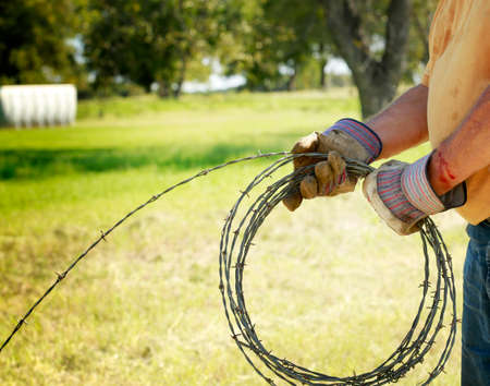 bearded wires: Fencing and safety: Mans hand working on barbed wire farm fence with blood cut.
