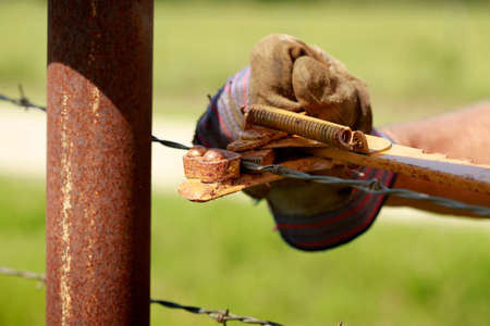 bearded wires: Fencing: Man working on old barb wire farm fence with Hand Fence Stretcher Stock Photo