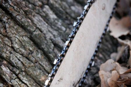 Close up of chainsaw on tree background. Selective Focus.